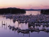 Roche Harbor Marina At dusk, San Juan Island, Washington, USA Photographic Print by Charles Gurche