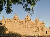 Mosque at Djenne, Mali, West Africa Fotografisk tryk af Janis Miglavs