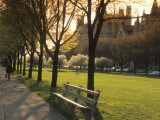 Midway Plaisance at University of Chicago, Chicago, Illinois, USA Photographic Print by Alan Klehr