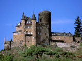 Castle, Rhine River, Germany Photographic Print by David Herbig