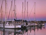 Sailboats at Dusk, Chesapeake Bay, Virginia, USA Photographic Print by Charles Gurche