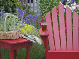 Ice Tea Rests on Red Chair Photographic Print by Don Paulson