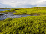 Salt Marsh side of Long Beach in Stratford, Connecticut, USA Photographic Print by Jerry & Marcy Monkman