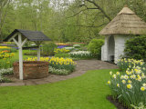 Wishing well in garden, Keukenhof Gardens, Lisse, Netherlands, Holland Photographic Print by Adam Jones