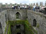 Waiting in Line To Kiss The Blarney Stone, Blarney Castle, Ireland Fotografisk tryk af Cindy Miller Hopkins