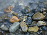 Rocks at edge of river, Eagle Falls, Snohomish County, Washington State, USA Fotografie-Druck von Corey Hilz