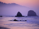 Runner on The Beach, Cannon Beach, Oregon, USA Photographic Print by Gavriel Jecan