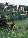 Scenic Villa Scene, Assisi, Umbria, Italy Photographic Print by Marilyn Parver