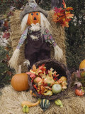 Halloween Decoration, Hill Country, Texas, USA Photographic Print by Rolf Nussbaumer