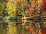 Pond, Green Mountain National Forest, Vermont, USA Photographic Print by Charles Gurche