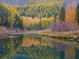 Autumn Colors reflect into McDonald Creek, Glacier National Park, Montana, USA Photographic Print by Chuck Haney