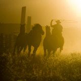 Silhouette of a Wrangler Roping Horses, Ponderosa Ranch, Seneca, Oregon, USA Photographic Print by Wendy Kaveney