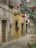 Cobblestone Street, Bale, Croatia Photographic Print by Adam Jones