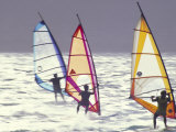 Windsurfing Photographic Print by Douglas Peebles