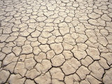 Cracked Mud, Fish River Canyon National Park, Namibia Photographic Print by Paul Souders