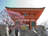 Soaring Gate of Temple, Kyoto, Japan Photographic Print by Shin Terada