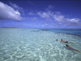 Aitutaki, Cook Islands Photographic Print by Douglas Peebles