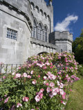 Medieval Castle, County Kilkenny, Ireland Fotografiskt tryck av William Sutton