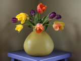 Fresh-Cut Tulips in Antique Glass Vase Photographic Print by Steve Terrill