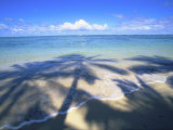 Beach with palm shadow Photographic Print by Douglas Peebles