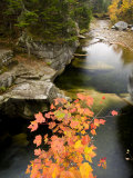 Upper Falls on the Ammonoosuc River, White Mountains, New Hampshire, USA Photographic Print by Jerry & Marcy Monkman