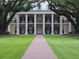 Oak Alley Plantation, Vacherie, St. James Parish, Louisiana, USA Photographic Print by Rob Tilley