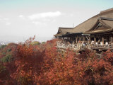 Kiyomizu Temple, Kyoto, Japan Photographic Print by Shin Terada