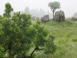 Fog on Drakensberg Mountains, Royal Natal National Park, Kwazulu Natal Province, South Africa Photographic Print by Paul Souders