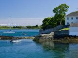 Pleasure Boats, Lough, Ireland Fotografiskt tryck av William Sutton
