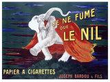 Je Ne Fume Le Nil, Papier a Cigarettes Gicléedruk van Leonetto Cappiello