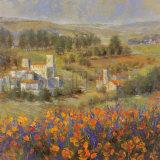Provencal Village VII Prints by Michael Longo
