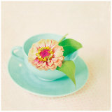 Zinnia and Tea Cup Prints by Mandy Lynne