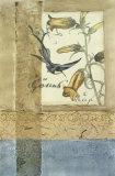Embellished Hummingbird Reverie I Giclee Print