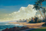 Kona Coast II Prints by Allan Stephenson