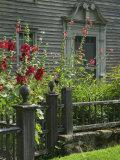Mission House Front Door, Stockbridge, Berkshires, Massachusetts, USA Photographic Print by Lisa S. Engelbrecht