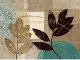 Leaf Kaleidoscope I Prints by Matina Theodosiou