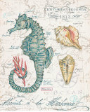 Centuria Seahorse Poster by Chad Barrett