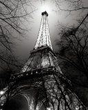 Sa Majesté La Tour Eiffel Prints by Antoine Carrara