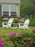 Backyard Along Marginal Way, Ogunquit, Maine, USA Photographic Print by Lisa S. Engelbrecht