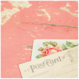 Post Card Pink Posters by Mandy Lynne