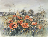 POPPY COTTAGE Limited Edition by PERRI DUNCAN