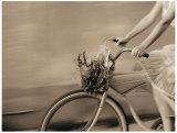 Bike In Motion Láminas por Mandy Lynne