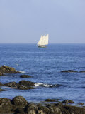 Sailboat Along The Coast, Kennebunkport, Maine, USA Photographic Print by Lisa S. Engelbrecht