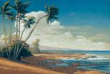 Kona Coast I Posters by Allan Stephenson