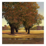 Allee en Greenbrier Giclee Print by Max Hayslette