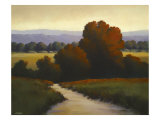 Days of Autumn Giclee Print by David Marty