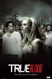 True Blood Print