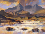 THE CUILLINS FROM SLIGACHAN Collectable Print by ED HUNTER