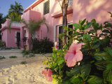 Hibiscus Blooms Outside a Lodge on a Beach Photographic Print by Michael Melford