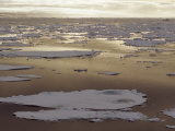 Pack Ice Melts in the Arctic Ocean Near Franz Josef Land, Russia Photographic Print by Gordon Wiltsie